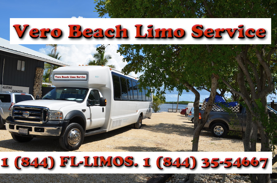 Bus-Minibus-Van-SUV rentals in South Florida